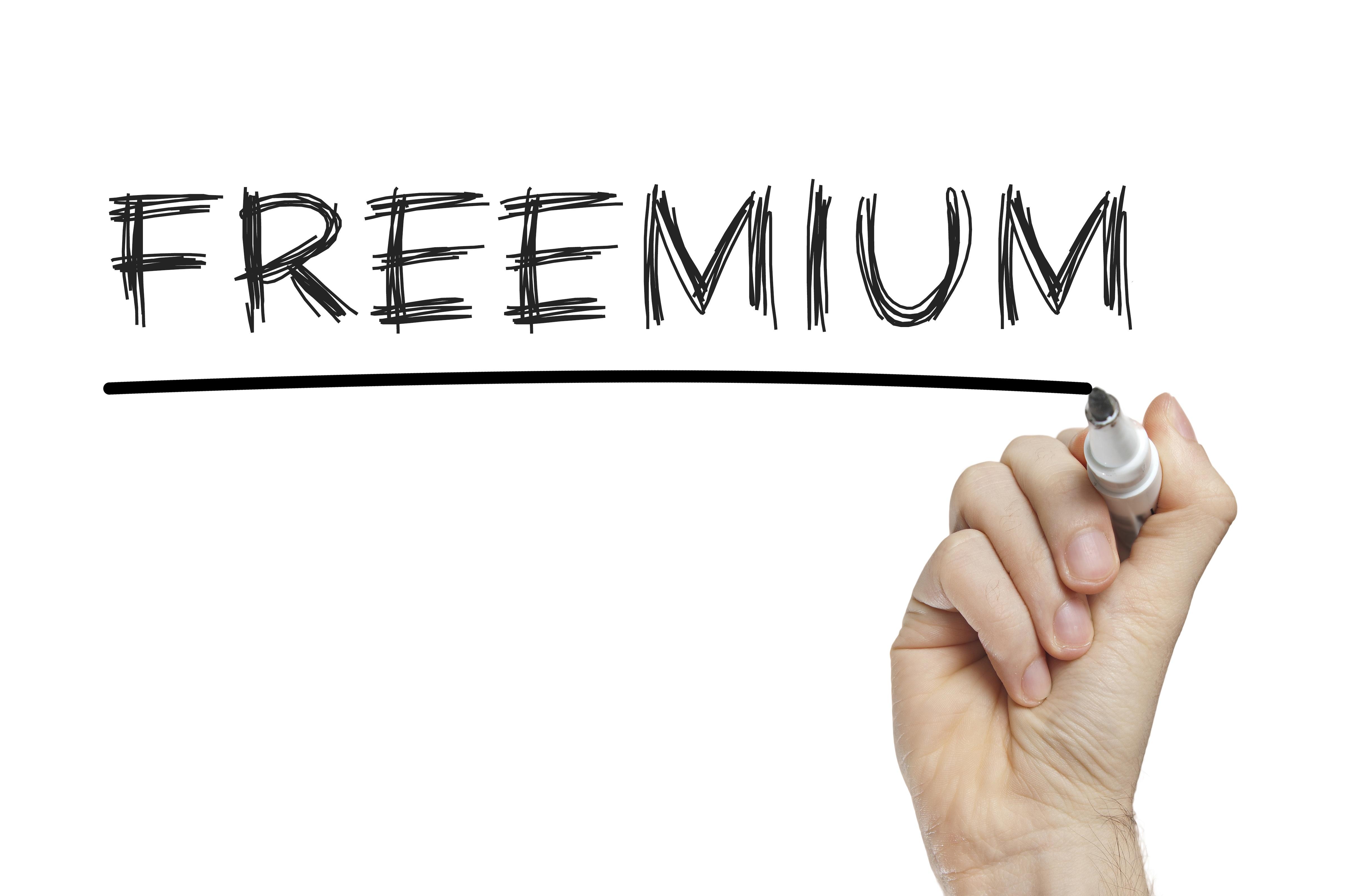 SAAS Freemium model.jpeg